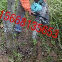 混合油起树苗机 挖树机 带土球起树苗机厂家