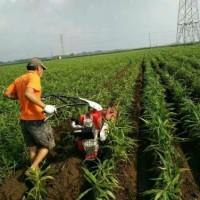 微耕机手动培土机四驱开沟机多少钱一台多功能开沟培土机视频