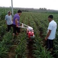 小型培土机价格及图片新款培土机开沟培土机的价格开沟培土机